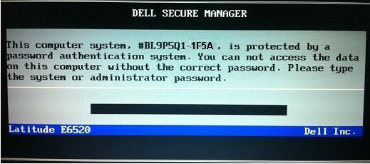 dell 1f5a bios password